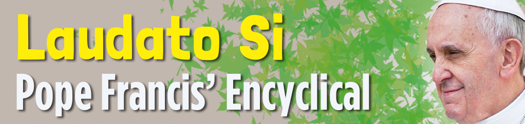 The new encyclical on the environment