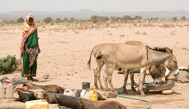 the  worst droughts in 30 years