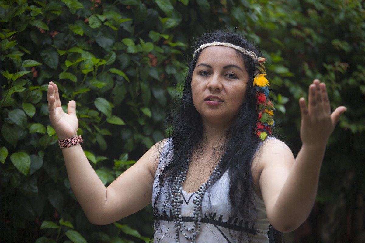 Indigenous people of Brazil