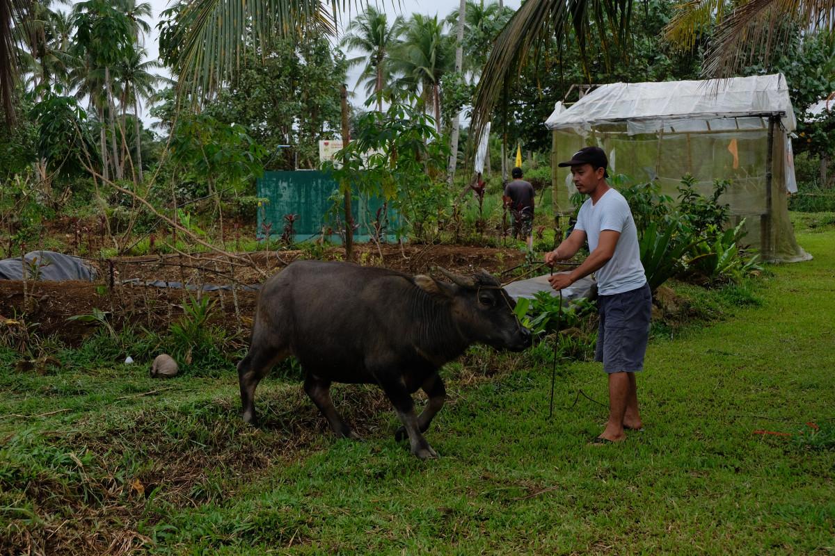 Peasant in Carigara